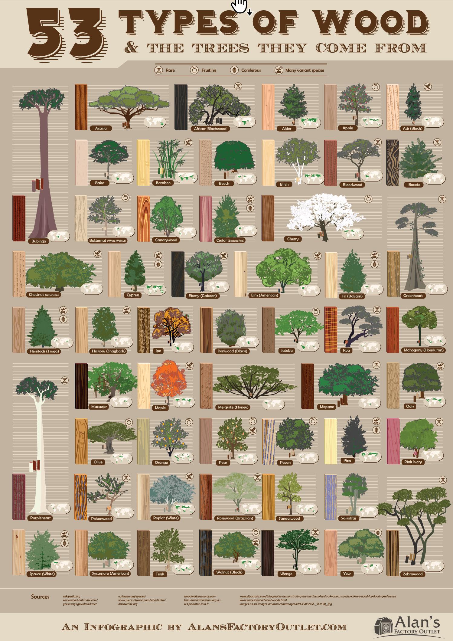 53 Wood Types