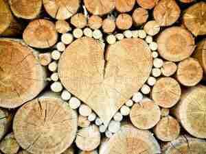 WoodAdvisor - Contact Us